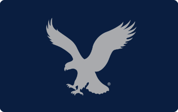 American Eagle Outfitters eGift Card 1