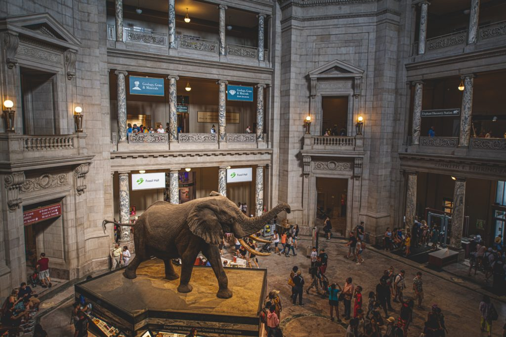free activities and museums and travel on a budget