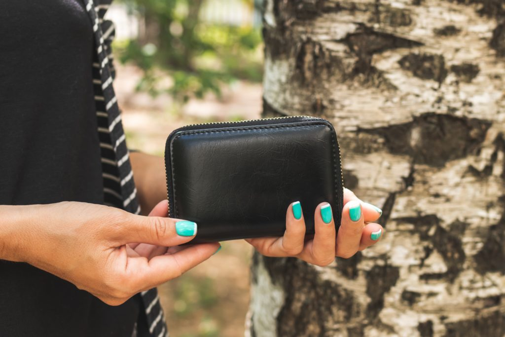 wallet and download moola
