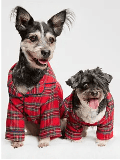 Have a Cozy and Safe Family Holiday this Season from Gap 3