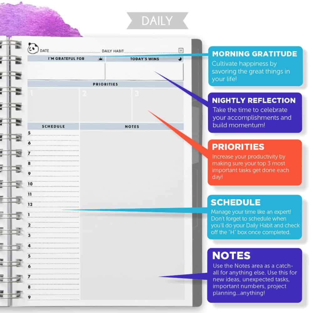 panda planner day-to-day planner best daily planner - make back to school easy with Moola, Canada's favorite money-saving app